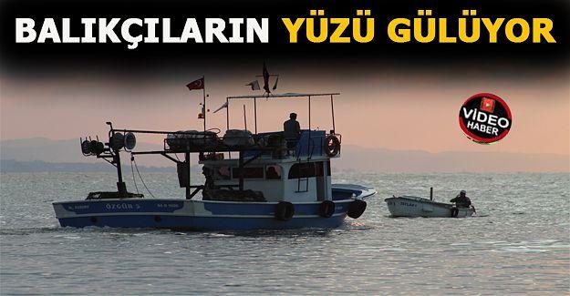 """Batı Karadenizli balıkçıların yüzü """"tekir""""le güldü"""