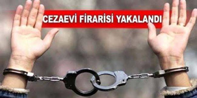 Kocaeli'de aranan cezaevi firarisi Düzce'de yakalandı