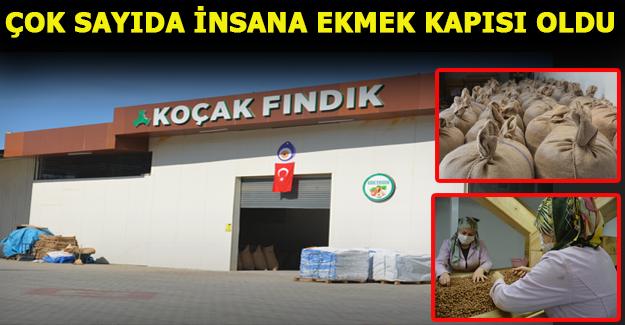 AKÇAKOCA'YA MODERN BİR FINDIK FABRİKASI KURULDU.