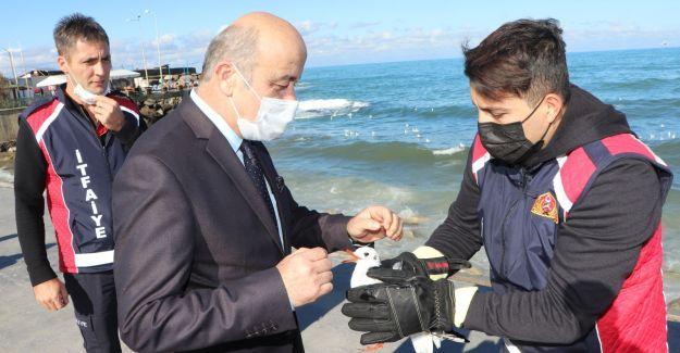 Yaralı Martıya İlk Müdahale Veteriner  Başkan Yardımcısından