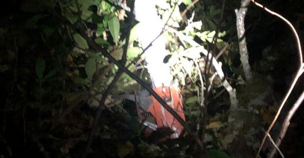 Yığılca'da, kestiği ağacın altında yaşamını yitirdi