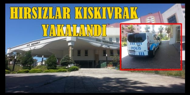 AKÇAKOCA POLİSİ HIRSIZLARI KISKIVRAK YAKALADI