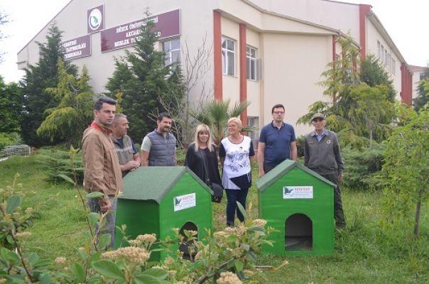 Akçakoca'da sokak hayvanlarına kulübe