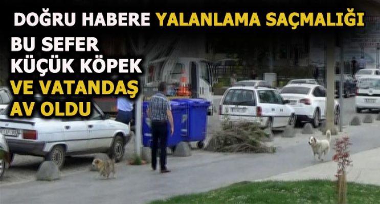"""""""ALNIMIZ AK BAŞIMIZ DİMDİK DİYORUZ """""""