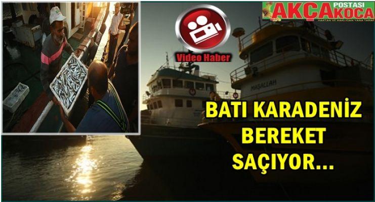 Batı Karadeniz'de Balık Bereketi