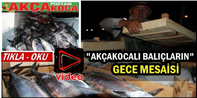 Batı Karadeniz'deki Balıkçıların Gece Mesaisi