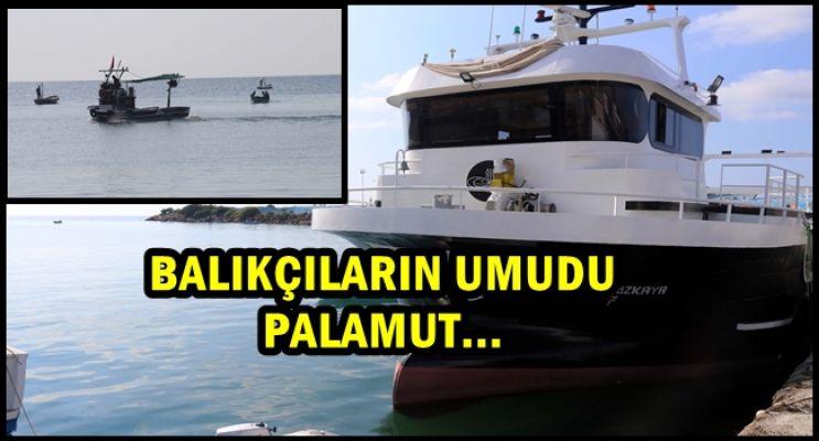 Batı Karadenizli Balıkçılar Yeni Sezondan Umutlu