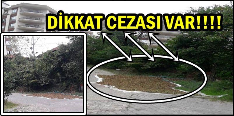 DİKKAT!.. CEZASI VAR