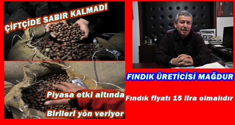 FINDIK ÜRETİCİSİ MAĞDUR (Video Haber)