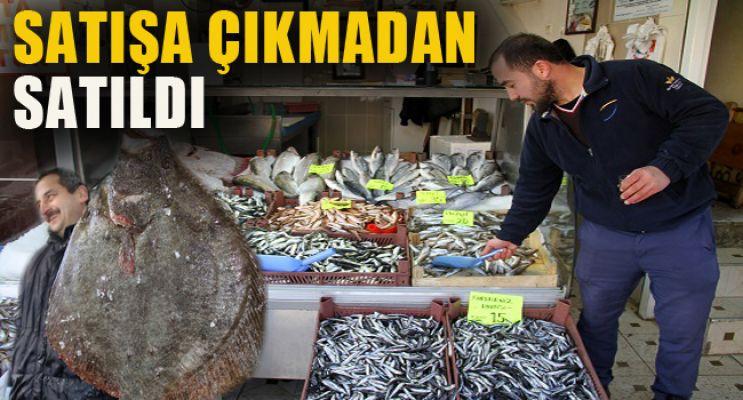 Kalkan balığı tezgaha gelmeden satıldı