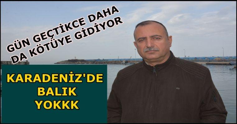 KARADENİZ'DE AŞIRI AVCILIK BALIĞI BİTİRİYOR