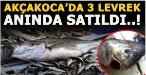 """Akçakoca'da """"levrek kıtlığında"""" 3 balık, 1600 liraya alıcı buldu"""