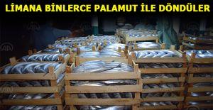 Balıkçılar limana binlerce palamutla...