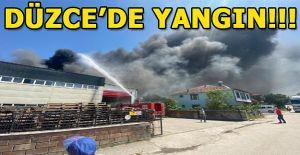 Kuruyemiş fabrikasında yangın çıktı