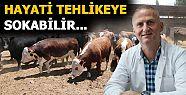 ACEMİ KASAPLARIN DİKKATİNE!...