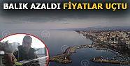 BATI KARADENİZ'DE BALIK AZALDI