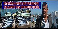PALAMUT MEMNUN ETMEDİ (video haber)