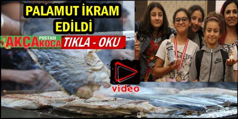 TÜRKİYE 'PALAMUT BRİÇ FESTİVALİ' SONA ERDİ