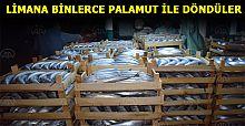 Balıkçılar limana binlerce palamutla döndü