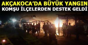 Akçakoca'daki yangın iki işletmeyi küle çevirdi